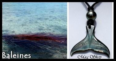 Bijoux  Baleines de TAHITI Collection Masculin MAG.SHOP TAHITI