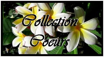 COLLECTION COEURS DE TAHITI PERLES-NACRES-KEISHIS DE TAHITI MAG.SHOP