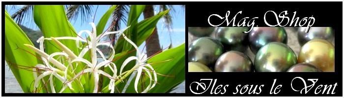 Collection Iles sous le Vent  Bijoux Acier - Perles de Tahiti MAG.SHOP