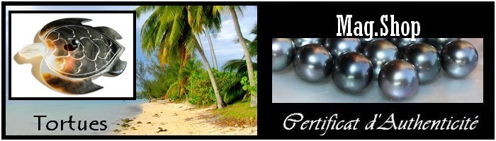 Collection Tortues de Tahiti MAG.SHOP NACRE PERLES KEISHIS