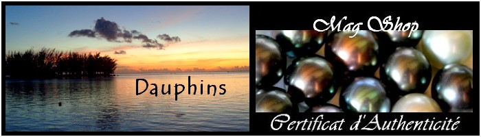 collection dauphins de tahiti MAG.SHOP