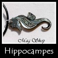 Hippocampes Collection Masculin de Tahiti MAG.SHOP TAHITI PERLES