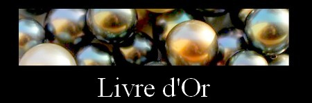 LIVRE D`OR MAG.SHOP