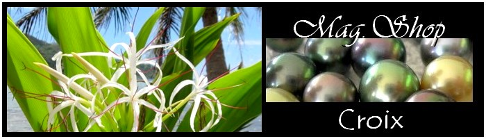 TAHITI MAG.SHOP-COLLECTION-CROIX  PERLES ET NACRE DE TAHITI