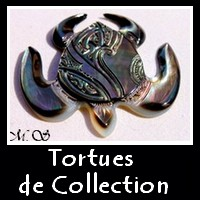 Tortues de Collection Vitrines MAG.SHOP TAHITI